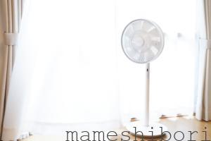 バルミューダ 省エネ 静音 リビング扇風機 The GreenFan(グリーンファン) | EGF-1700 (ホワイト×グレー)